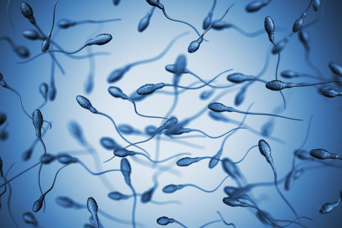 lifespan of sperm in air