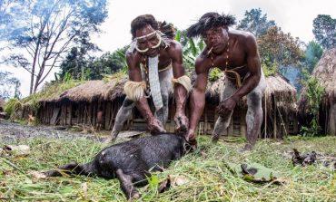 """Gratë presin gishta e këmbëve, traditat e pazakonta të fisit """"Dani"""" në Indonezi"""