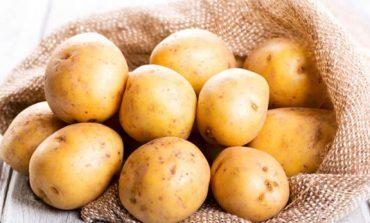 Shqiptarët, ndër vendet me konsumin më të lartë të patates në botë
