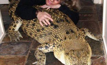 Gruaja 'e çmendur' që bashkëjeton me 5 krokodilë në shtëpinë e saj… (FOTO)