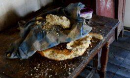VIDEO/ Kur varfëria pushton gjithçka, historia e dhimbshme e familjes në Gramsh: Hamë bukë të thatë me ujë