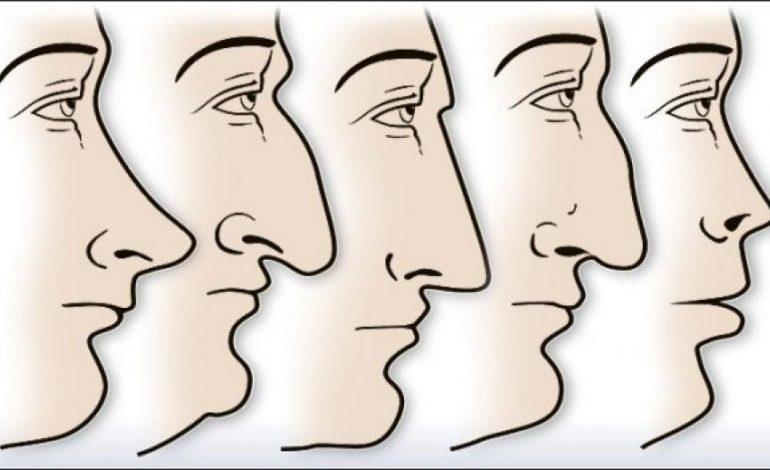 STUDIMI/ Forma e hundës tregon karakterin tuaj