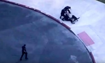 Qeni i policisë 'mbërthen' të arratisurin, ja momenti kur kap hajdutin (VIDEO)