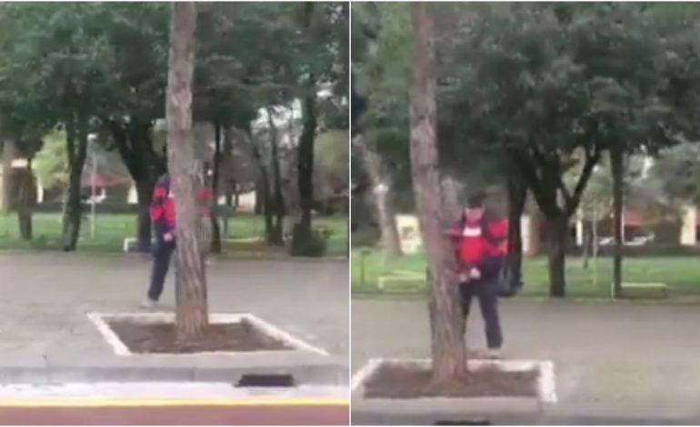 VIDEO EKSKLUZIVE/ Kur nxënësi i shkollës i bën sh*rrën pemës, në mes të ditës, përballë Kryeministrisë