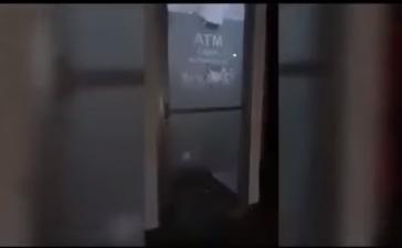 Momenti shokues: Gazetari vritet në transmetim të drejtpërdrejtë (VIDEO)