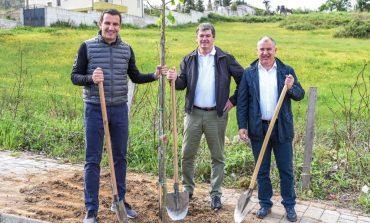 """Bamir Topi i """"përvishet"""" pemëve me Veliajn: Disa kanë vendosur të mbjellin sherre, disa pemë"""