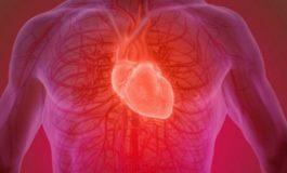 A kemi vërtet një numër të caktuar të rrahjeve të zemrës gjatë gjithë jetës
