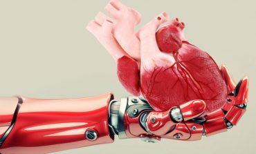 Arritjet e reja në teknologji/ Robotët tani rrisin organe njerëzore