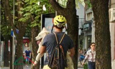"""NDODH NË TIRANË/ Me """"Hoverboard"""", qenin në krah dhe KOKOREN drejt e në... (FOTO)"""