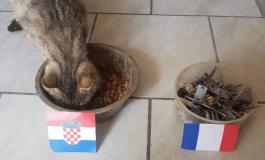 E PABESUESHME/ Macja bën parashikimin SURPRIZË për finalen e Botërorit