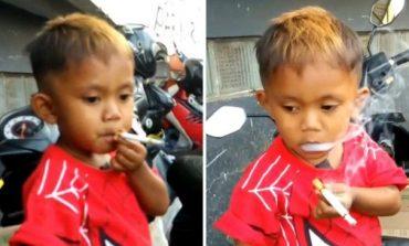 Njihuni me 2-vjeçarin që tymos 40 cigare në ditë