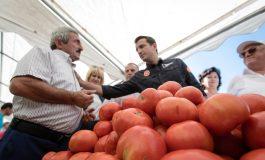 """""""DOMATE FEST""""/ Prezantohen produktet dhe ushqimi tradicional i zonës së Shëngjinit"""