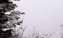 """""""ZYRTARISHT DIMËR""""/ Dëbora ZBARDH jugun e Shqipërisë. Trashësia arrin deri në... (FOTO)"""