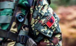 BUXHETI I USHTRISË/ Nga gjeneralët tek ushtarët, ja sa do të rriten nga 1 prilli pagat e ushtarakëve