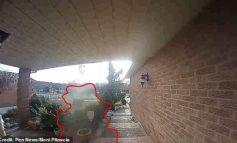 E PAZAKONTË/ Kamerat e sigurisë kapin fantazmën (VIDEO)