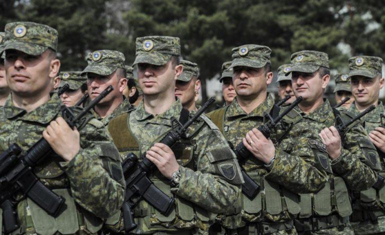 NATO PËR FSK/ Nuk jemi kundër ushtrisë së Kosovës
