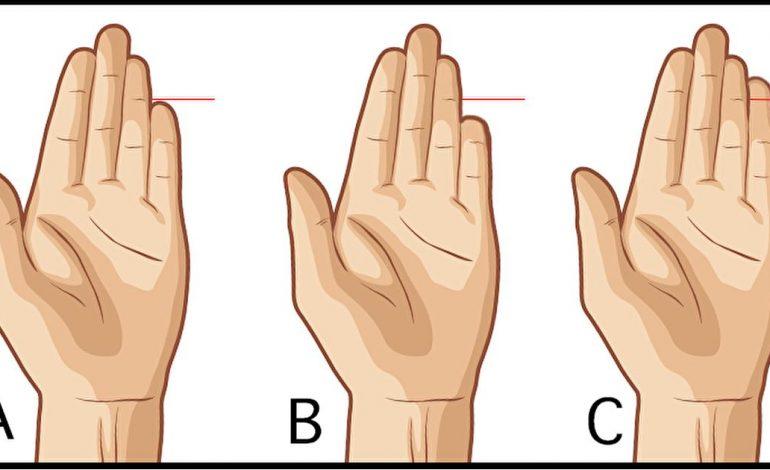 SIPAS STUDIUESVE TË NJOHUR/ Ja çfarë tregon gishti i vogël për personalitetin tuaj
