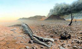 ALARMI i shkencëtarëve: Shfarosja e 6-të e Tokës ka nisur