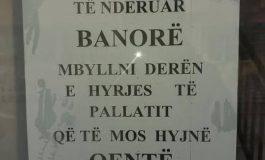 """""""MBYLLNI...""""/ Në Tiranë, aty ku qentë e lagjes bëhen... mik shtëpie! (FOTO)"""