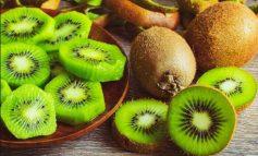 EFEKTE TË SHUMËFISHTA/ Dobitë e kivit në organizëm, humbja e peshës...