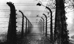 DOKUMENTI 1946/ Internimet e para në Shqipëri, dy kampet ku gra e fëmijë vuanin në uri dhe epidemi