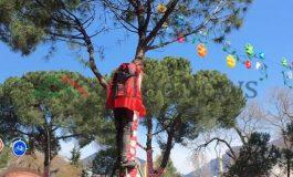 """""""FLUTURON, FLUTURON""""/ Opozita proteston, i riu me flamur ngjitet në pemë për të parë..."""