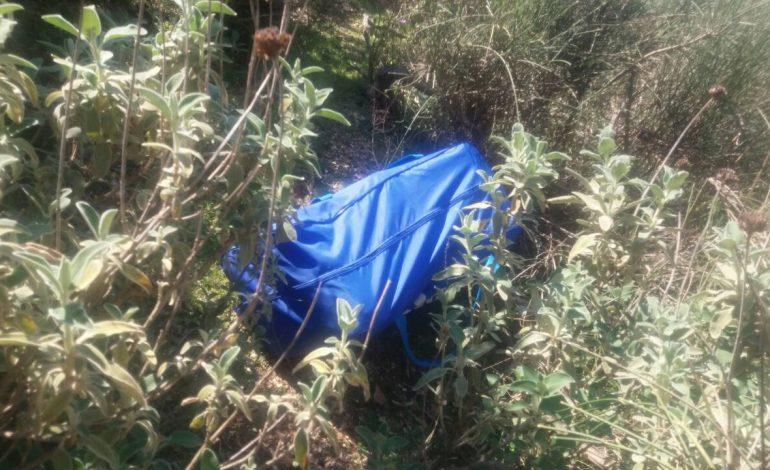 KAPEN SHTATË ÇANTA ME DROG NË ULQIN/ Dyshimet se erdhën nga Shqipëria