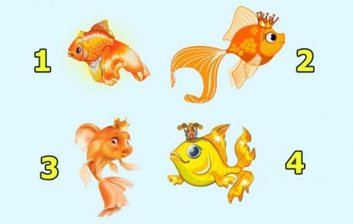 """ËNDRRAT """"NË SIRTAR""""/  Zgjidh një peshk dhe ZBULO kur do bëhen realitet"""