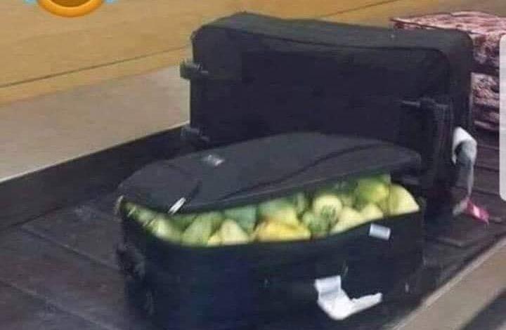 NDODH EDHE KJO/ Kur valixhja nuk ka rroba por…speca!