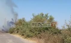NDODH NË FIER/ Ndezin zjarr për të pastruar arën, flakët djegin rrjetin elektrik dhe lënë fshatin pa energji