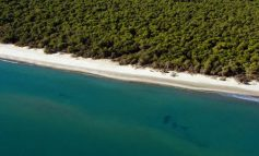 TRAGJEDI NË ITALI/ Mbytet nëna shqiptare 26-vjeçe në plazh, e bija shpëton