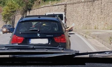 TRAGJIKE NË VLORË/ Makina del nga rruga, vdes pasagjeri. Shoferi...