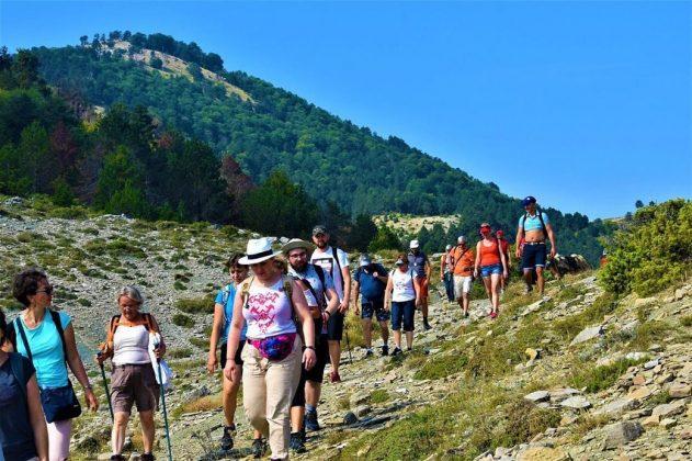 RRITET NUMRI I VIZITORËVE/ Berati destinacion turistik ndërkombëtar (FOTO)