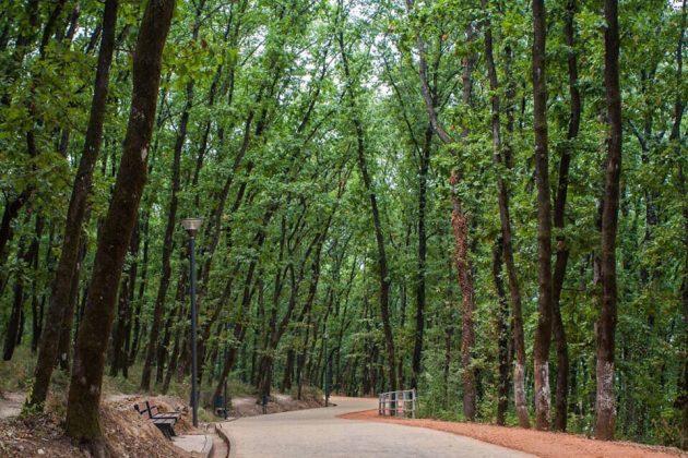 HAPËSIRA E PREFERUAR NË KRYEQYTET/ Tirana jo vetëm e pastër, por edhe gjelbëruar
