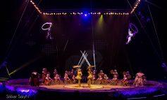 HYRJA FALAS/ Cirku i Budapestit vjen për herë të parë në kryeqytet