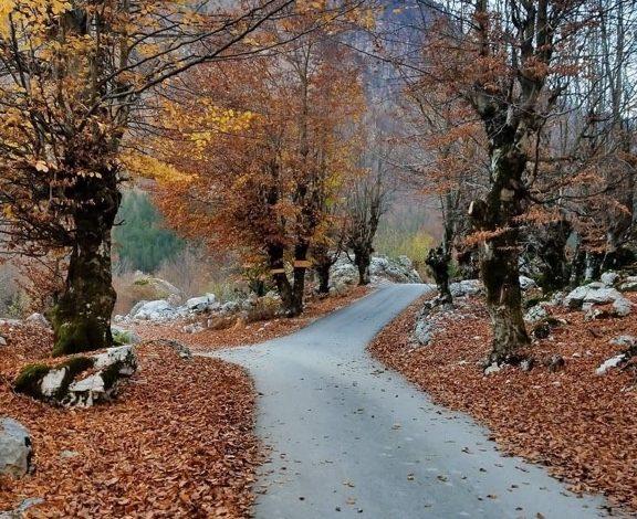 SHKREPJA E DITËS/ Laguna e Valbonës, aty ku natyra është një mrekulli e papërsëritshme
