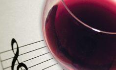 RISIA/ Një aplikacion, që kombinon verën me muzikën