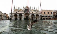 VIJON GJENDJA ALARMANTE NË VENECIA/ Përmbytja më e madhe në 50 vitet e fundit