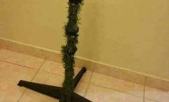 FOTO E RRALLË/ Cili qytet e vuri këtë pemë për vitin e ri?