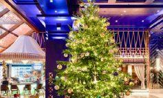 E ZBUKURUAR ME DIAMANTE/ Pema më e shtrenjtë e Krishtlindjeve në botë
