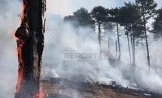 PREJ DY DITËSH DIGJET MALI I KOSHNICËS NË GRAMSH/ Zjarrfikësit thirrje për ndihmë: Na u bashkoni që të fikim këtë përbindësh