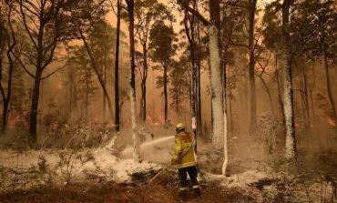 SITUATA NË AUSTRALI/ Arrestohen 183 persona të akuzuar për zjarrvënie të qëllimshme