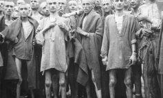 """DOSSIER/ """"Torturat, pushkatimi i 104 shokëve dhe lirimi pasi familjet paguan 20 napolona flori…"""""""