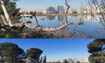 TIRANË/ Natyra e mrekullueshme dhe qetësia që të ofron Liqeni Artificial