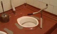 FOTOLAJM/ Kur WC përfshin edhe... timon!