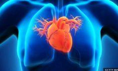 STUDIM/ Vendosja e stentës në zemër rrit rrezikshmërinë për vdekje