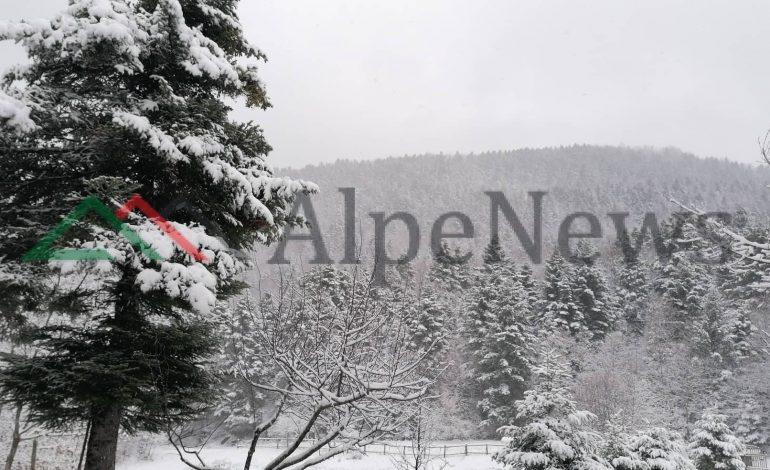 """NËN """"MAGJINË"""" E DËBORËS/ Bredhi i Hotovës destinacioni perfekt për të kaluar dimrin (FOTO)"""