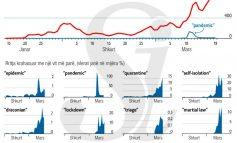 STATISTIKAT/  Ja fjalët që po kërkohen më shumë tani në internet