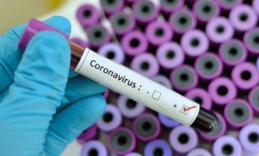 STUDIMI/ Koronavirusi mund të rikthehet sipas cikleve sezonale