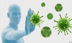 GJITHÇKA DUHET TË DINI/ Si funksionon sistemi imunitar dhe kur nuk na mbron nga viruset?